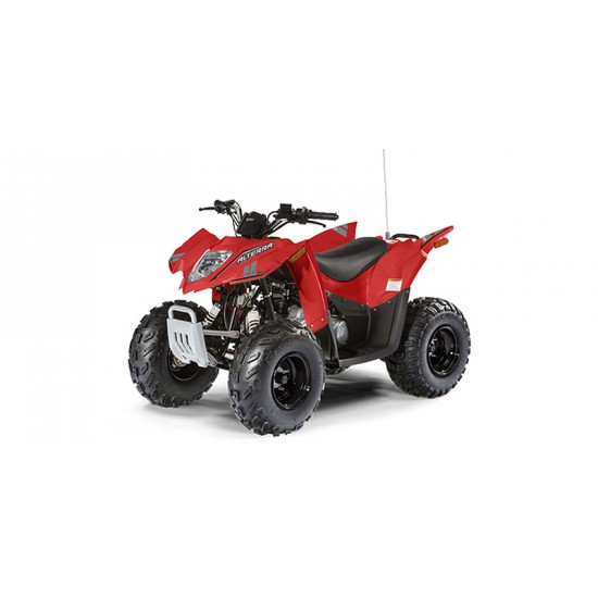 2018 Arctic Cat DVX 90